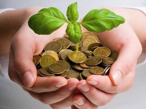 Как заработать дома деньги идеи